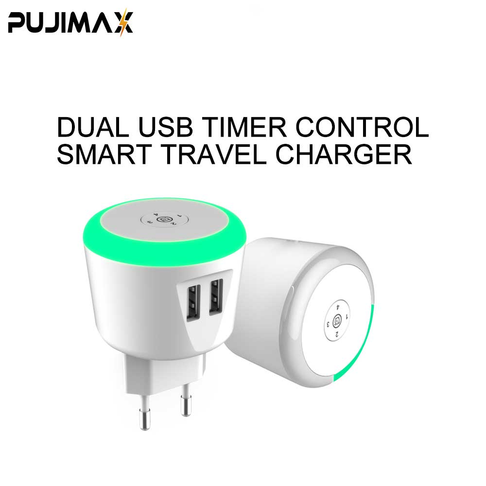 Timer Control Charger